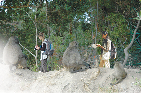 CUNY doctoral students Margaret Bryer, left, and Shahrina Chowdhury collecting observational data on chacma baboons in South Africa