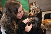 Canine stress relief for Queens College students