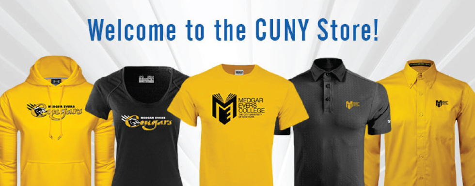 Best College For Business In Cuny 101