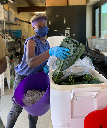 Brooklyn Community Foundation COVID Response Grant will allow KCC's Urban Farm to continue to distribute fresh produce to food insecure Kingsborough students throughout the summer.
