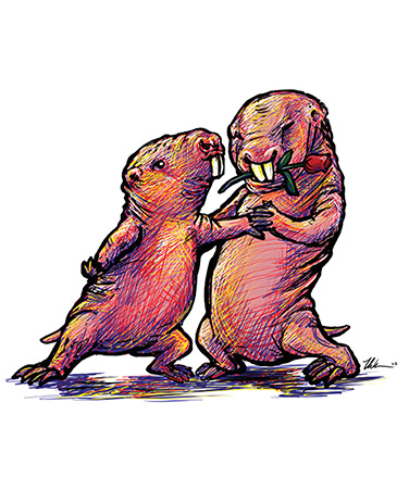 Sex and the Single Mole Rat